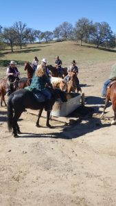 Fall Ride 2015